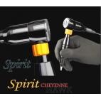 CHEYENNE HAWK SPIRIT NOIR