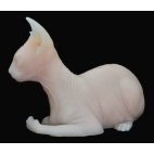 CHAT SPHINX EN SILICONE ULTRA REALISTE